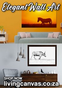 Landscape Wildlife Canvas Wall Art for your Home